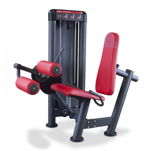 Standing Leg Curl area isotonica STIVSPORT