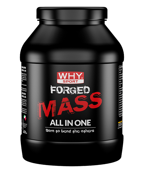Whysport Forge Mass post-workout