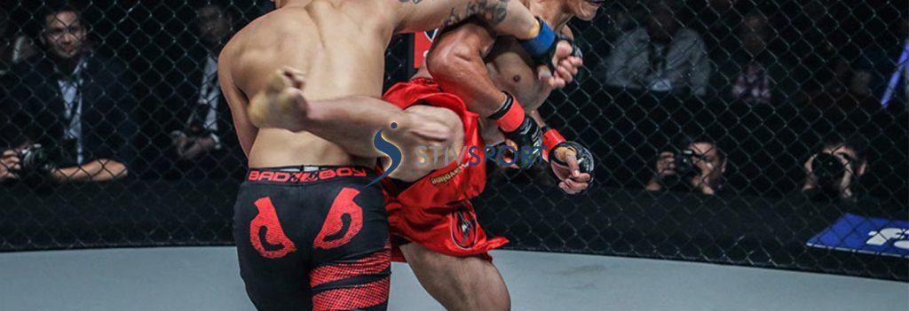 MMA Leone